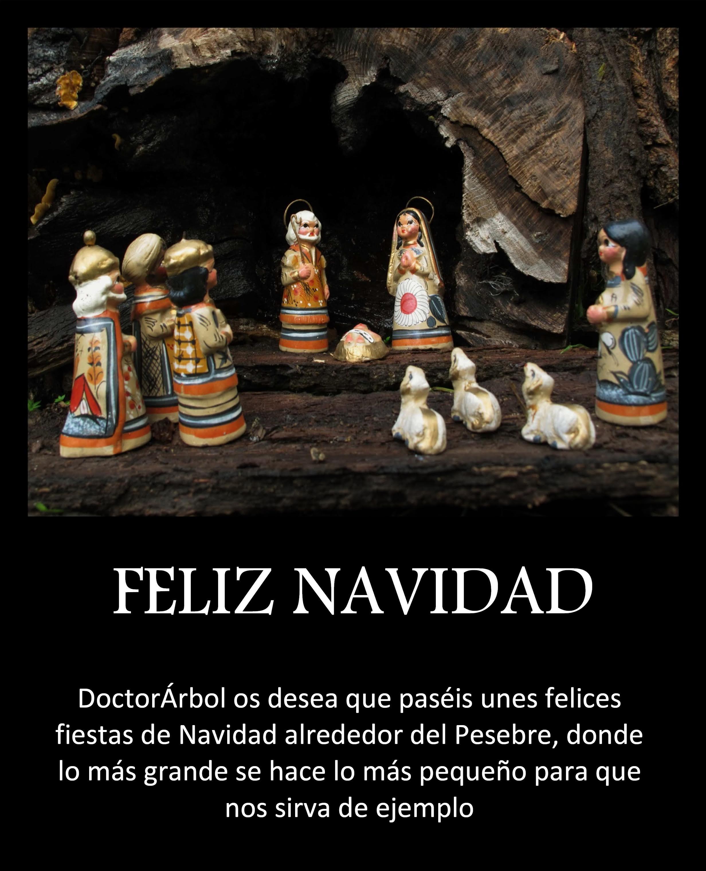 navidad-doctorarbol-2016
